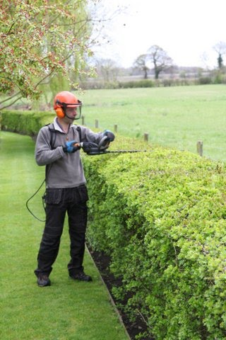 Eco Garden Maintenance using Pellenc hedge trimmer to maintain a long hawthorn hedge