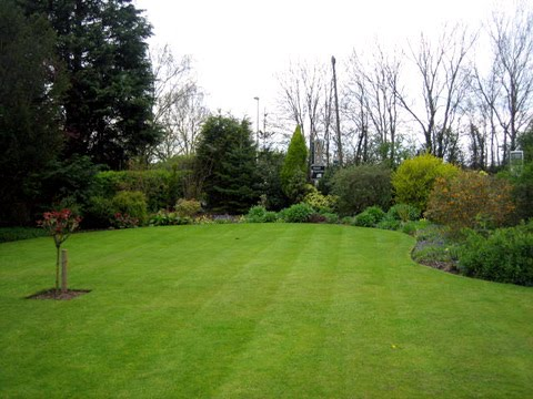 Garden maintained by Eco Garden Maintenance (Tadcaster) with curved lawn edges and borders.