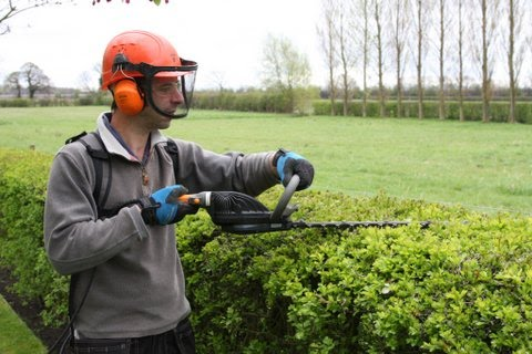 Eco_Garden_Maintenance_hedge_trimming