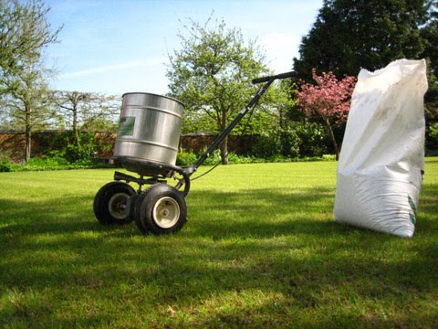 Lawn_fertliser_spreading_by_Eco_Garden_Maintenance